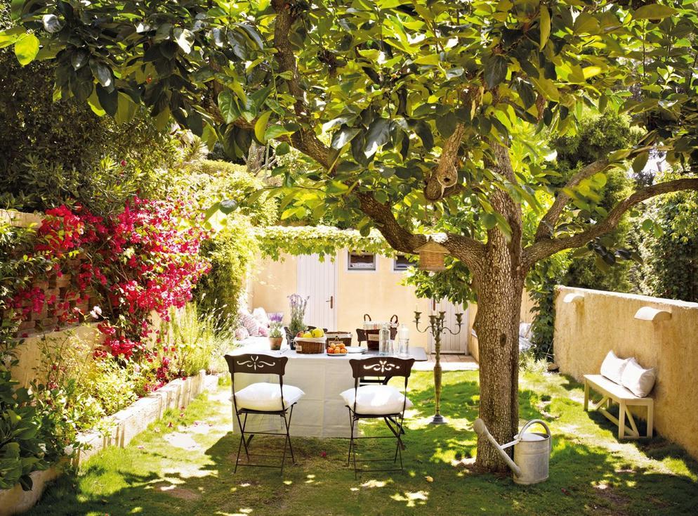 jardins quintal pequeno:Inspiração: flores e plantas no quintal